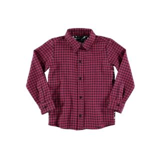 Plaid Shirt (guitars)