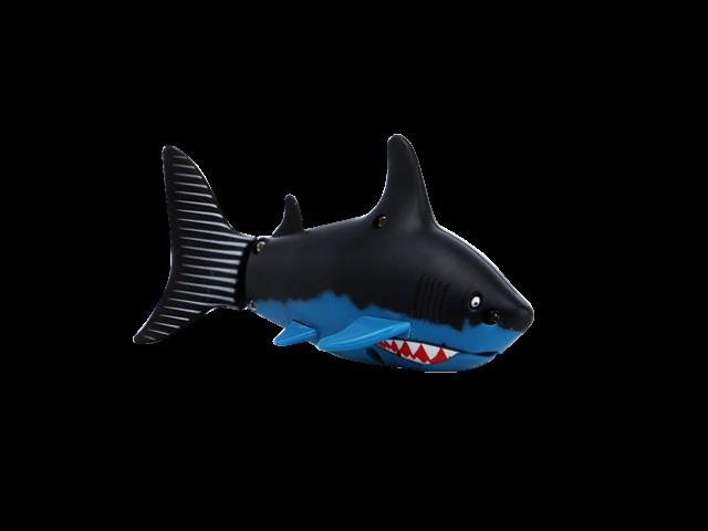 Shark Attack - RC