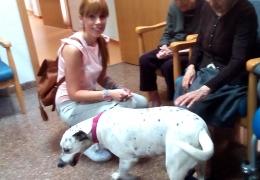 Terapia Asistida con Animales: CHICA, la perrita alegre, llega a nuestra casa.